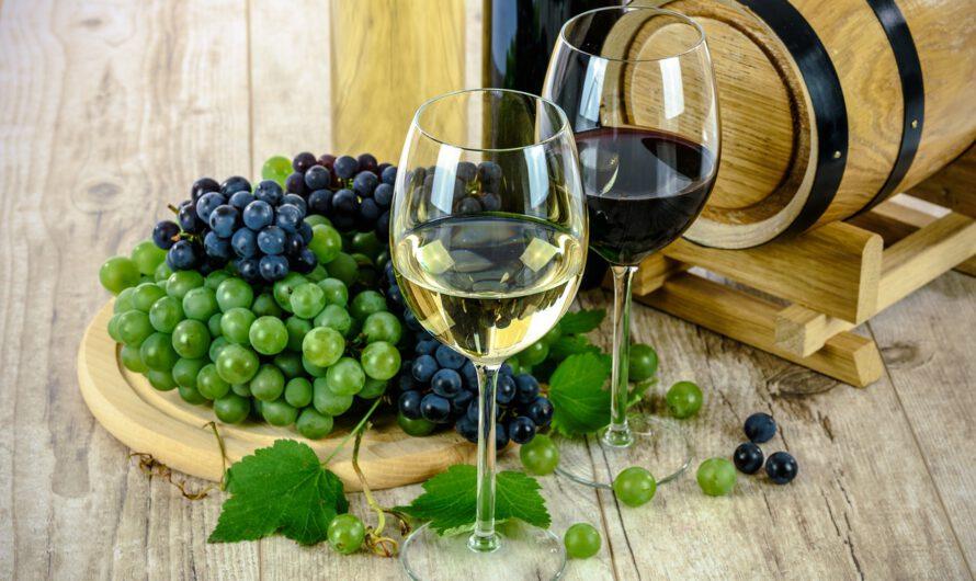 5 voordelen van een wijnkoelkast